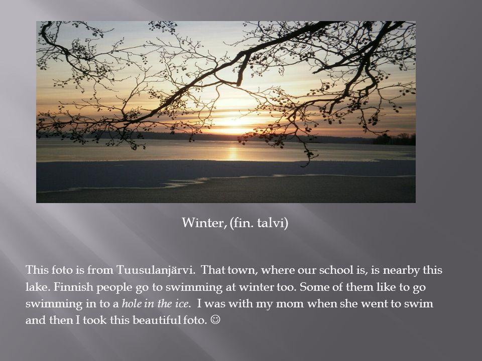 Winter, (fin.talvi) This foto is from Tuusulanjärvi.