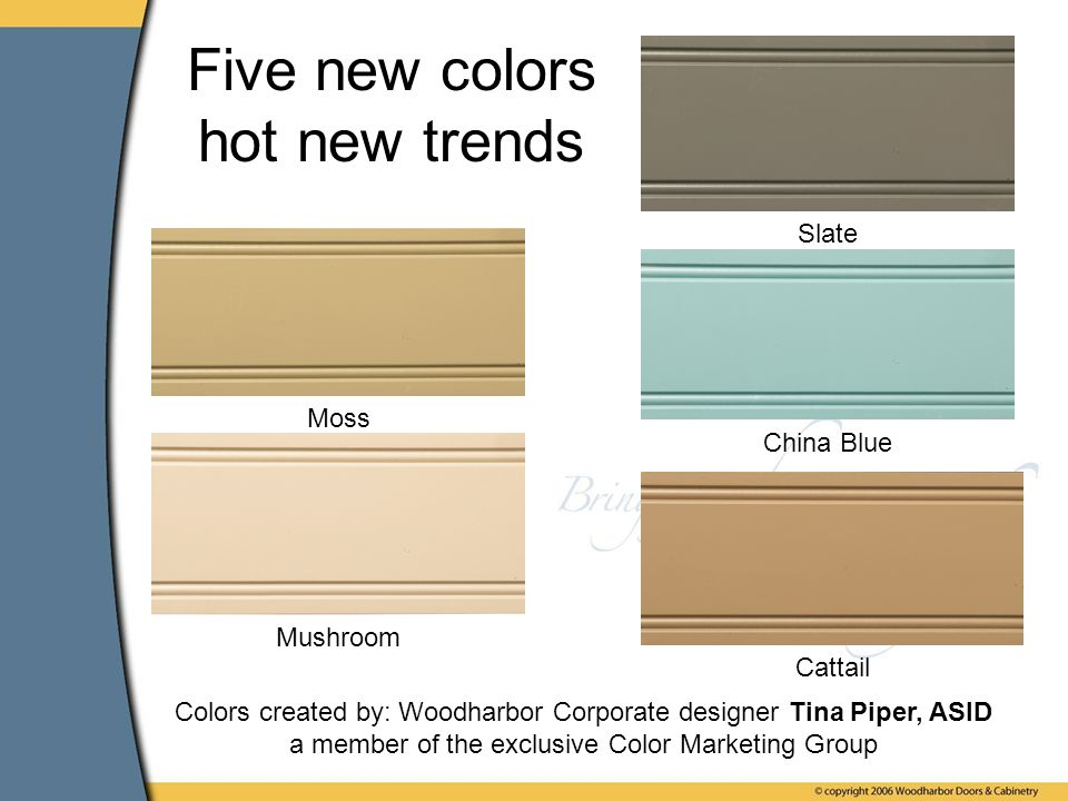 Moss China Blue Mushroom Cattail Slate Five new colors hot new trends Colors created by: Woodharbor Corporate designer Tina Piper, ASID a member of the exclusive Color Marketing Group