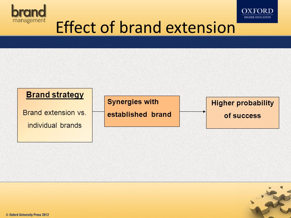 Effect of brand extension Brand strategy Brand extension vs. individual brands Synergies with established brand Higher probability of success