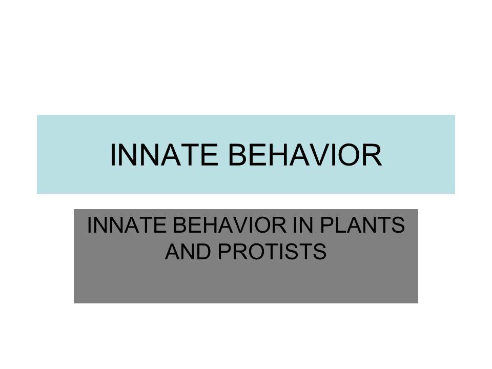INNATE BEHAVIOR INNATE BEHAVIOR IN PLANTS AND PROTISTS