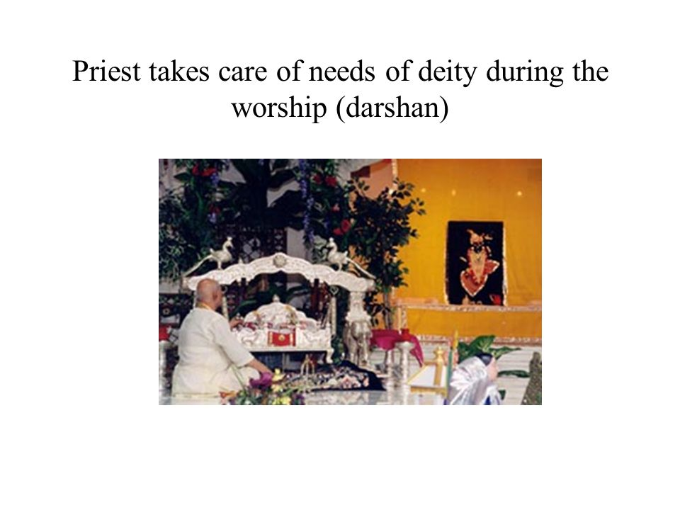 Priest takes care of needs of deity during the worship (darshan)