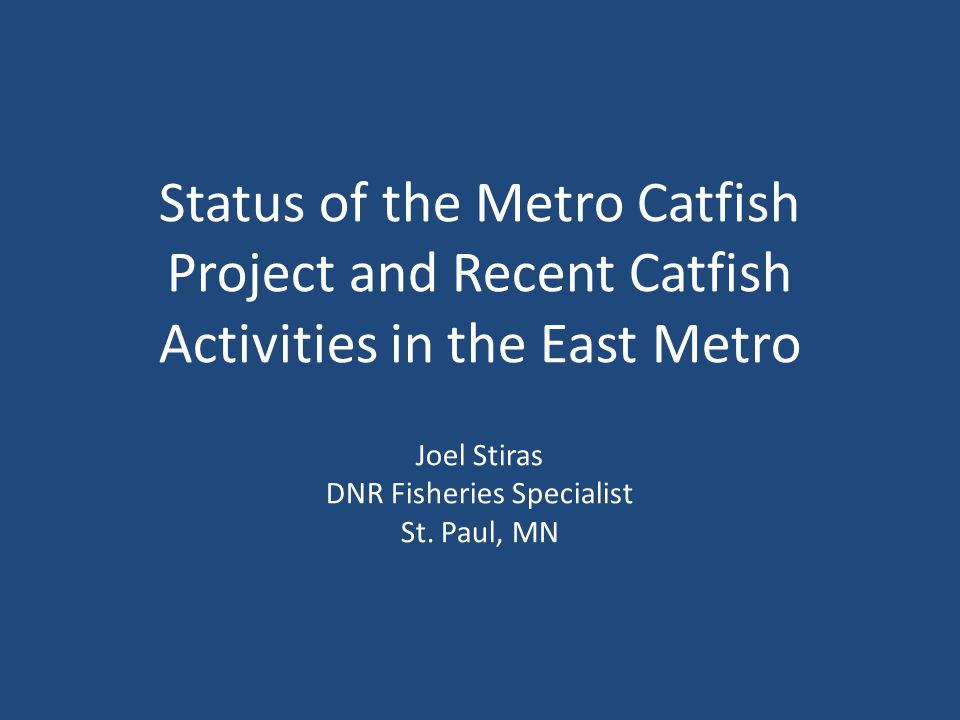 Status of the Metro Catfish Project and Recent Catfish Activities in the East Metro Joel Stiras DNR Fisheries Specialist St.