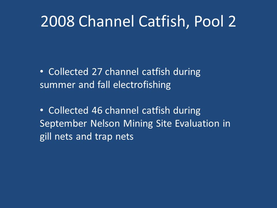 2008 Channel Catfish, Pool 2 Collected 27 channel catfish during summer and fall electrofishing Collected 46 channel catfish during September Nelson Mining Site Evaluation in gill nets and trap nets