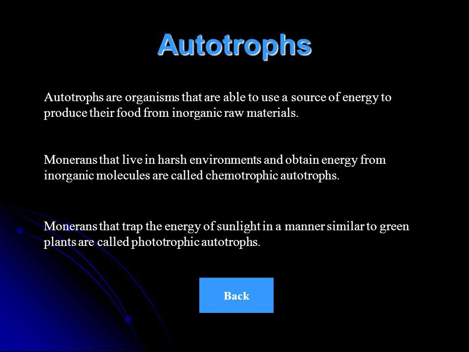 Obtaining Energy HeterotrophsAutotrophsMain Menu