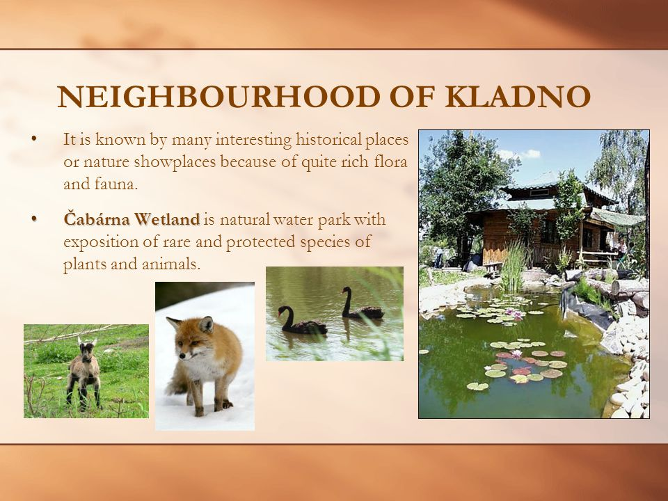 NEIGHBOURHOOD OF KLADNO It is known by many interesting historical places or nature showplaces because of quite rich flora and fauna.