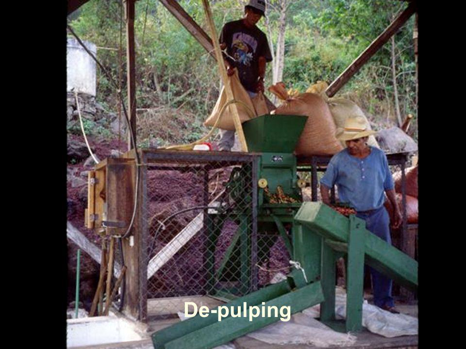 De-pulping