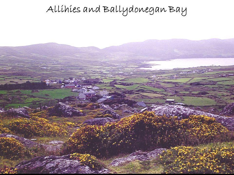 Allihies and Ballydonegan Bay