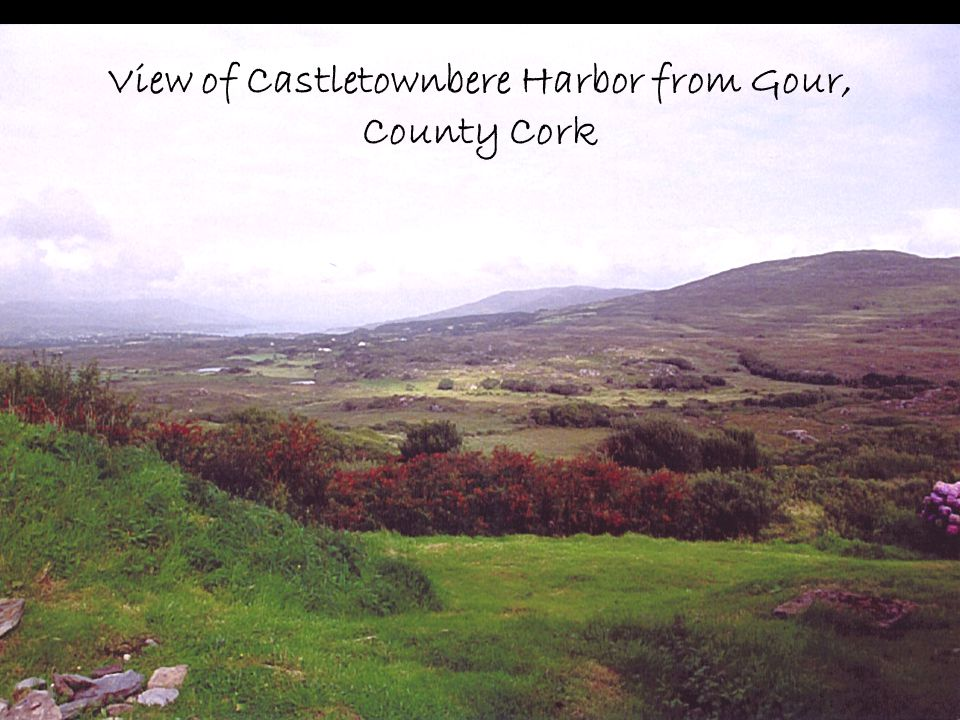 View of Castletownbere Harbor from Gour, County Cork