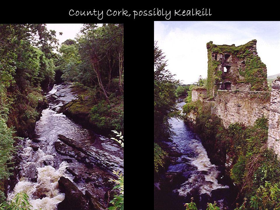 County Cork, possibly Kealkill