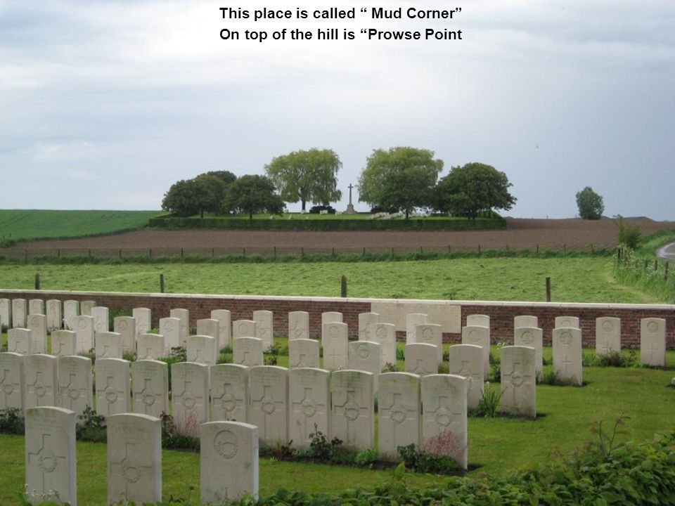 In Flanders Fields In Flanders fields the poppies blow Between the crosses, row on row That mark our place; and in the sky The larks, still bravely singing, fly Scars heard amid the guns below We are the Dead.