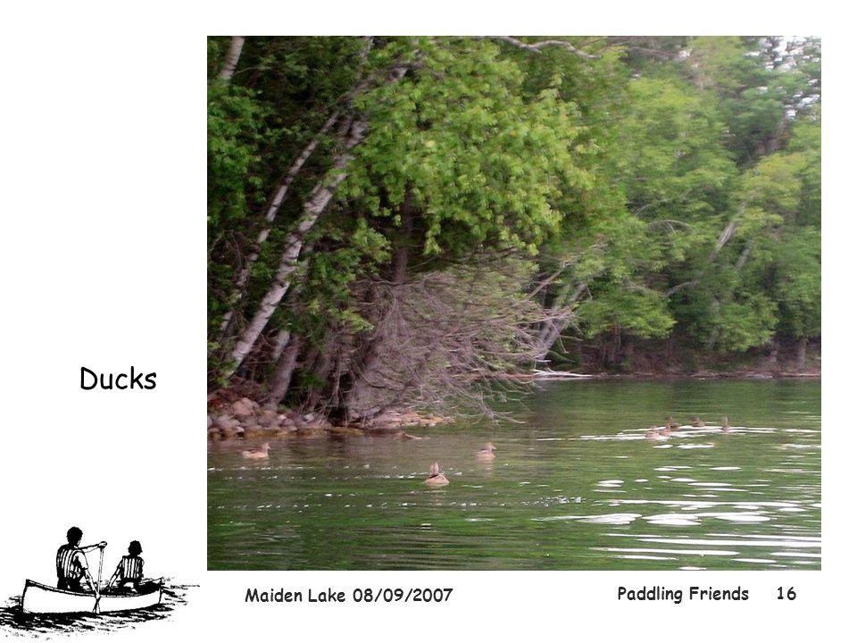 Maiden Lake 08/09/2007 Paddling Friends16 Ducks