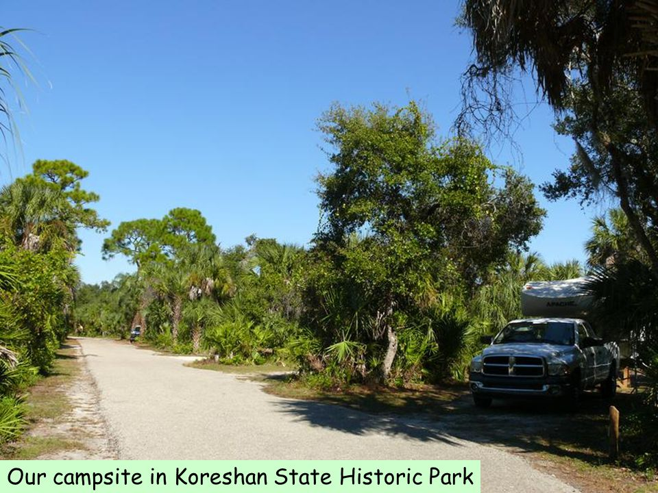 Our campsite in Koreshan State Historic Park