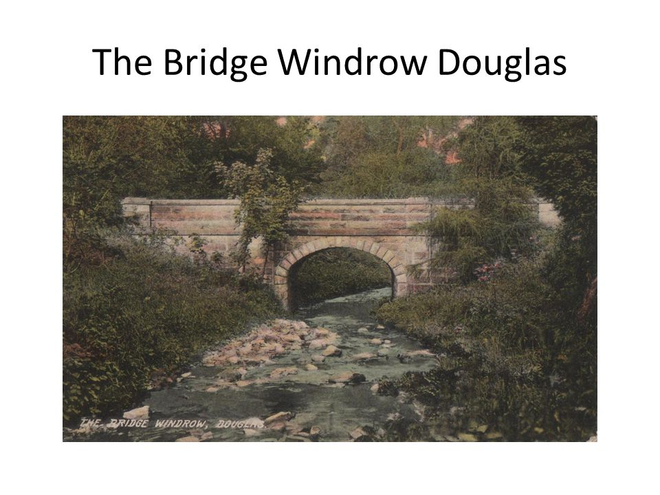 The Bridge Windrow Douglas