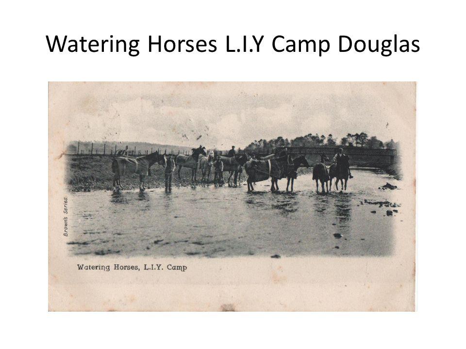 Watering Horses L.I.Y Camp Douglas