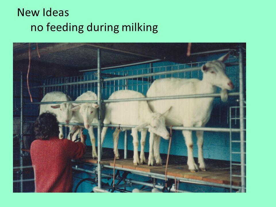 New Ideas no feeding during milking
