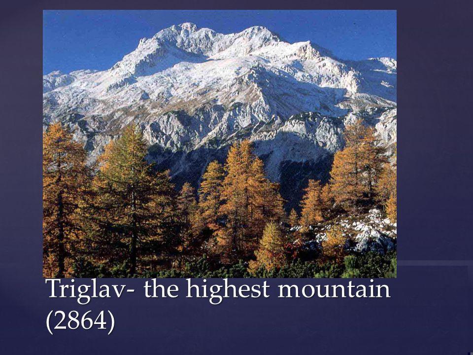 Triglav- the highest mountain (2864)
