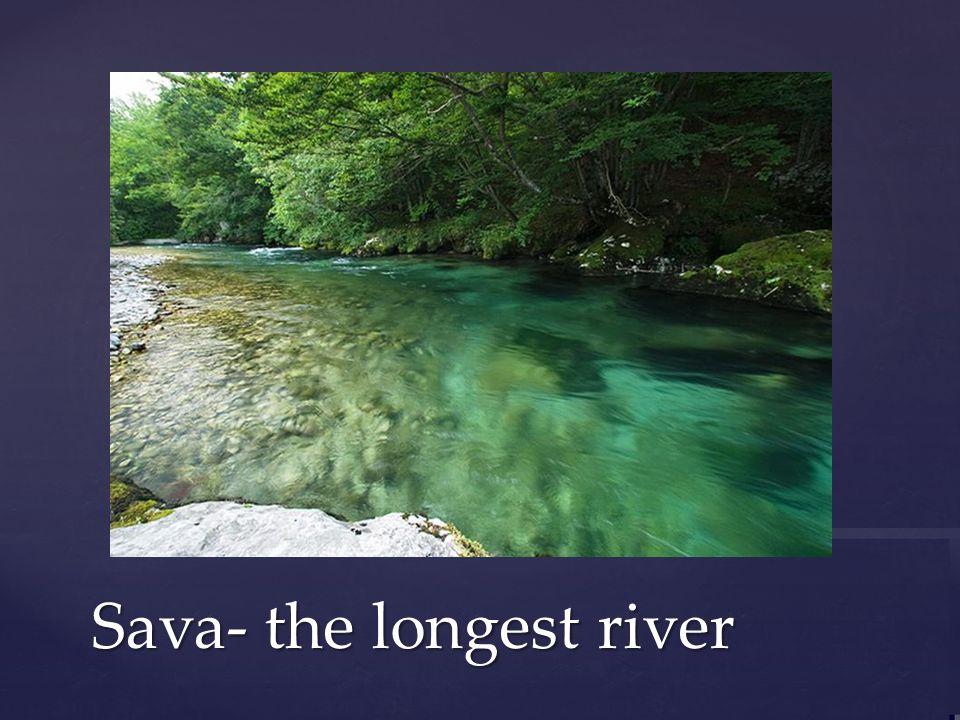 Sava- the longest river