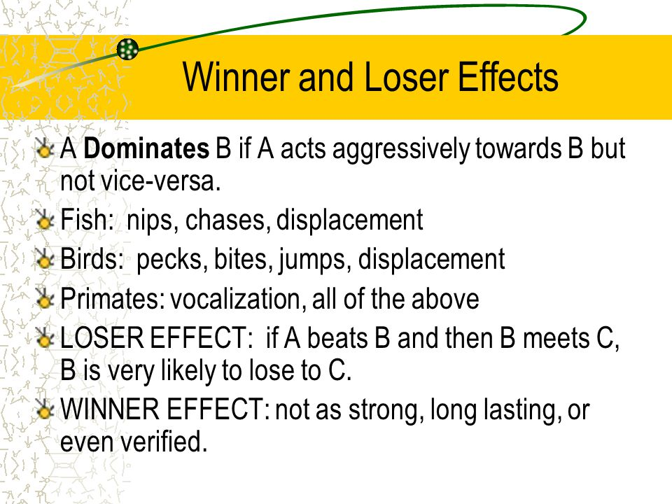 Winner and Loser Effects A Dominates B if A acts aggressively towards B but not vice-versa.