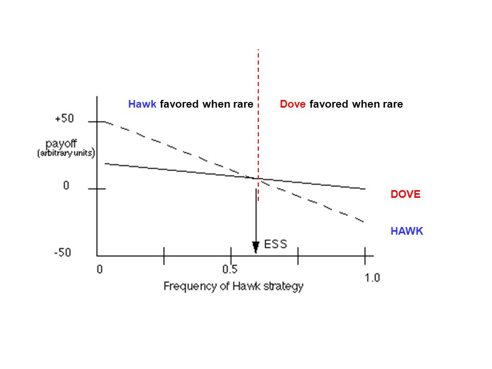 HAWK DOVE Hawk favored when rareDove favored when rare