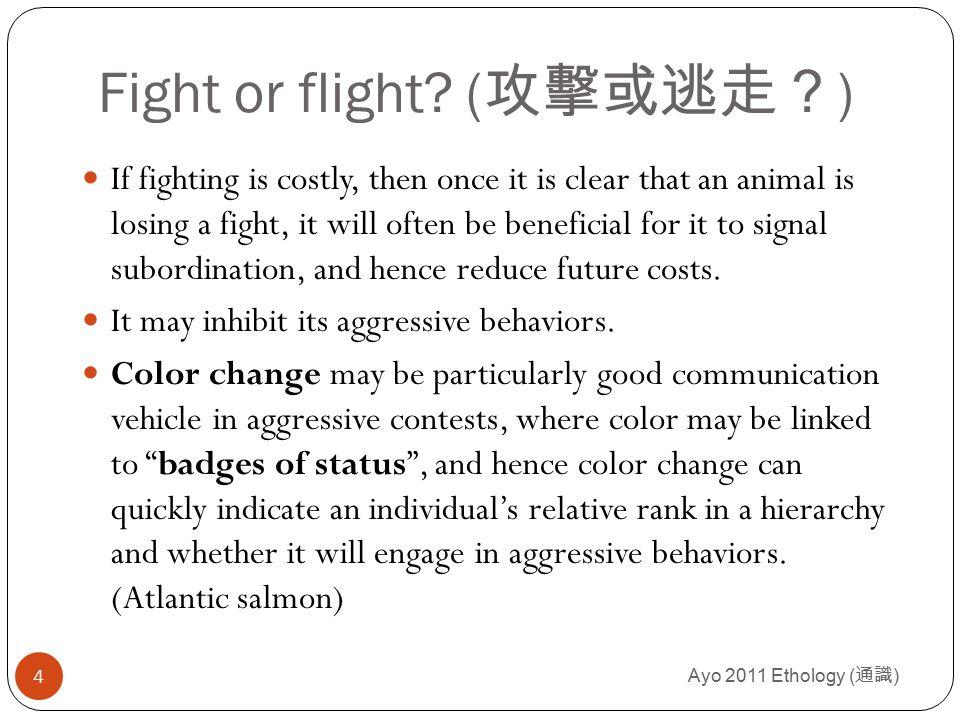 Ayo 2011 Ethology ( 通識 ) 5 color as a signal