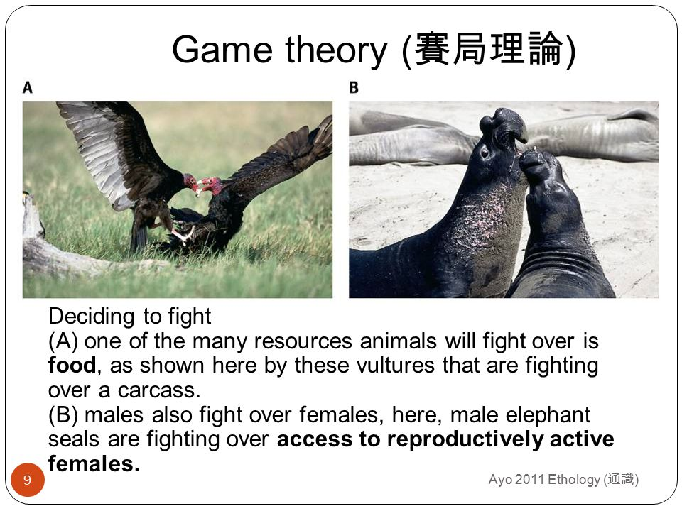 Value of a resource ( 某項資源的價值 ) Ayo 2011 Ethology ( 通識 ) 10 Two individuals contesting a resource may not assign the same value to that resource.