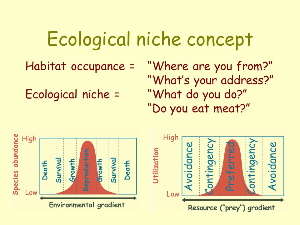 Ecological niche concept Habitat occupance = Where are you from? What's your address? Ecological niche = What do you do? Do you eat meat?