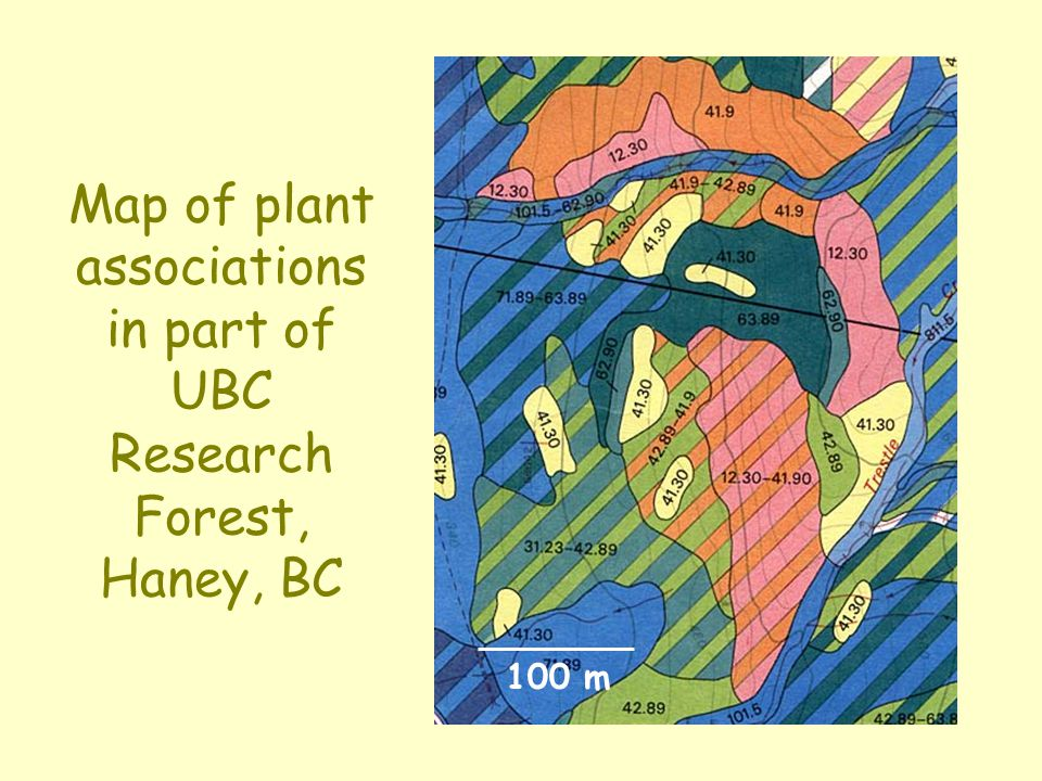 Local plant association mapping UBC Research Forest, Haney (after Klinka, 1975)