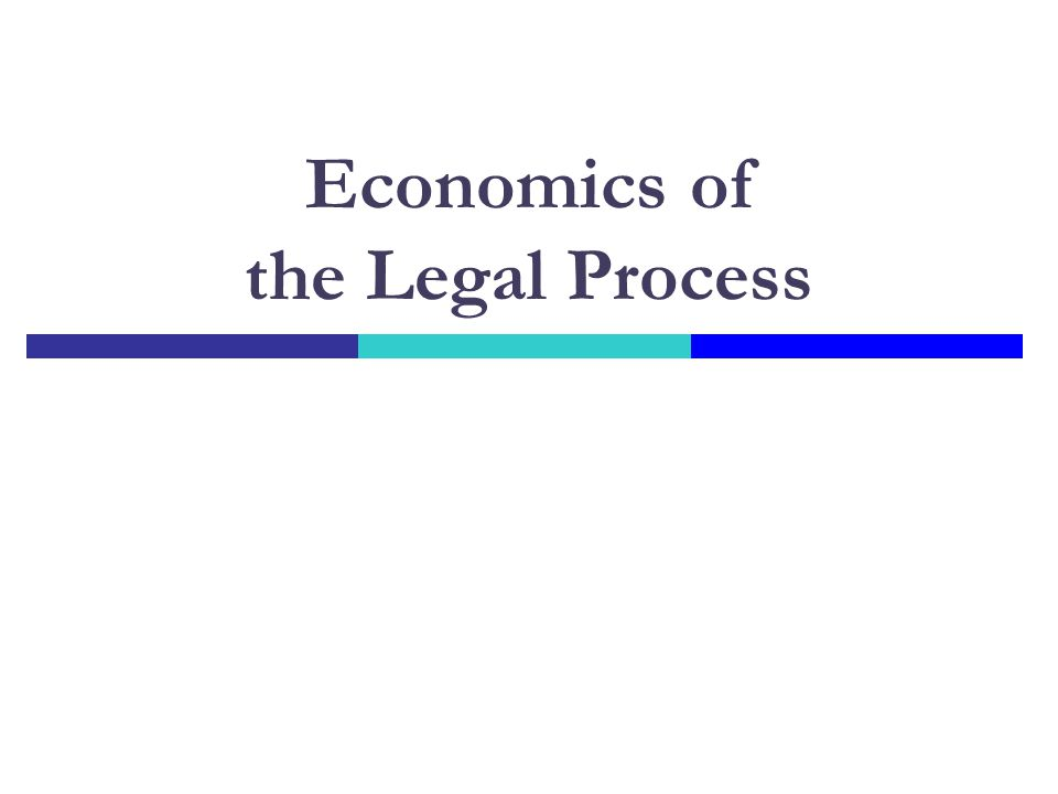 Economics of the Legal Process