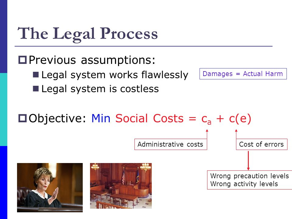 The Legal Process  Previous assumptions: Legal system works flawlessly Legal system is costless  Objective: Min Social Costs = c a + c(e) Damages = Actual Harm Administrative costsCost of errors Wrong precaution levels Wrong activity levels