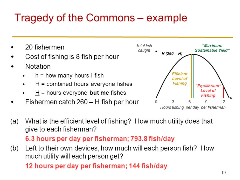 19 Tragedy of the Commons – example  20 fishermen  Cost of fishing is 8 fish per hour  Notation  h = how many hours I fish  H = combined hours everyone fishes  H = hours everyone but me fishes  Fishermen catch 260 – H fish per hour (a)What is the efficient level of fishing.