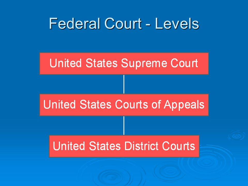 U.S. District Courts  Sample name: United States District Court for the Middle District of Florida.  Parties: Plaintiff (initiates action). Plaintif