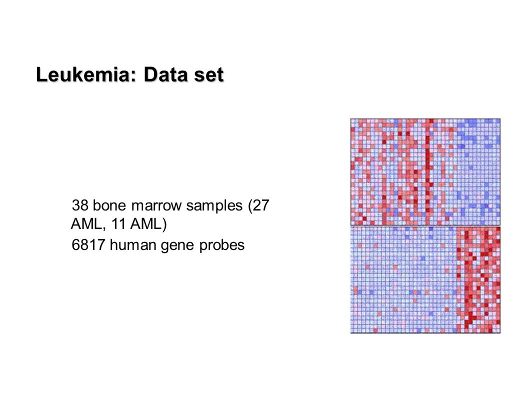  38 bone marrow samples (27 AML, 11 AML)  6817 human gene probes Leukemia: Data set