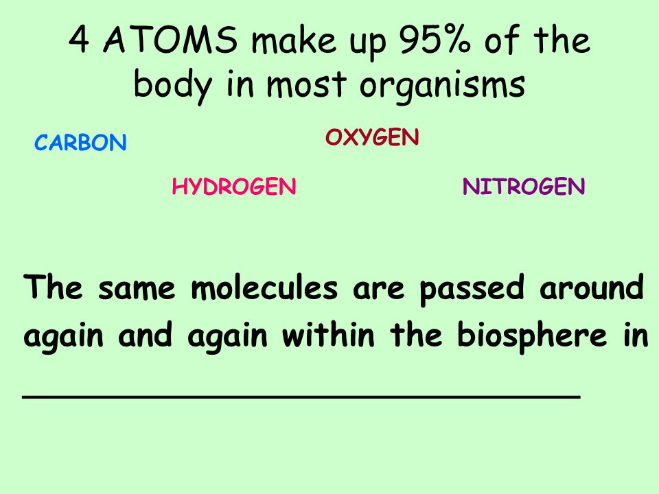 4 ATOMS make up 95% of the body in most organisms CARBON HYDROGEN OXYGEN NITROGEN The same molecules are passed around again and again within the biosphere in ___________________________