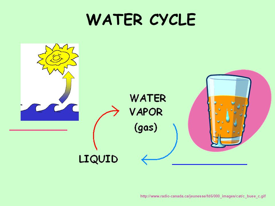 WATER CYCLE __________ _____________ http://www.radio-canada.ca/jeunesse/fd6/000_images/cat/c_buee_c.gif