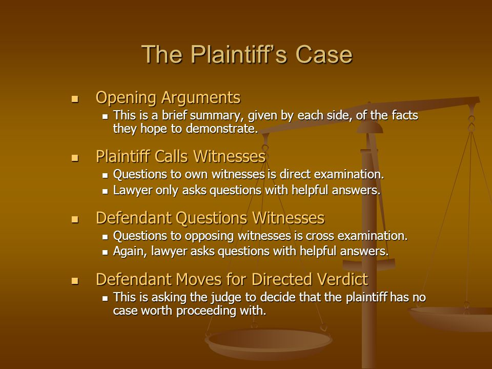 The Plaintiff's Case Opening Arguments Opening Arguments This is a brief summary, given by each side, of the facts they hope to demonstrate. This is a