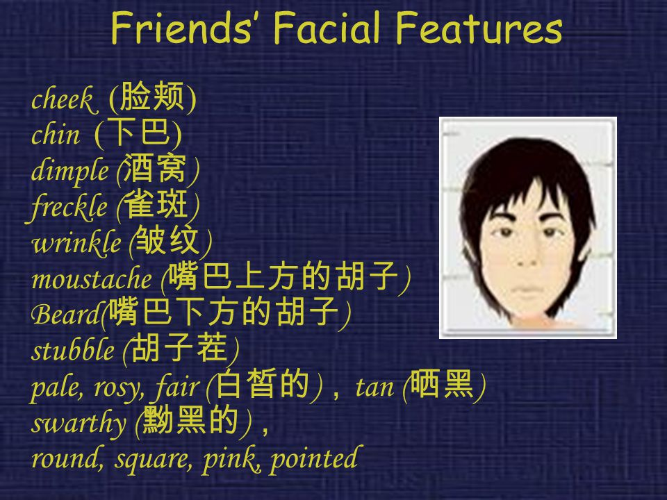Friends' Facial Features cheek ( 脸颊 ) chin ( 下巴 ) dimple ( 酒窝 ) freckle ( 雀斑 ) wrinkle ( 皱纹 ) moustache ( 嘴巴上方的胡子 ) Beard( 嘴巴下方的胡子 ) stubble ( 胡子茬 ) pale, rosy, fair ( 白皙的 ) , tan ( 晒黑 ) swarthy ( 黝黑的 ) , round, square, pink, pointed