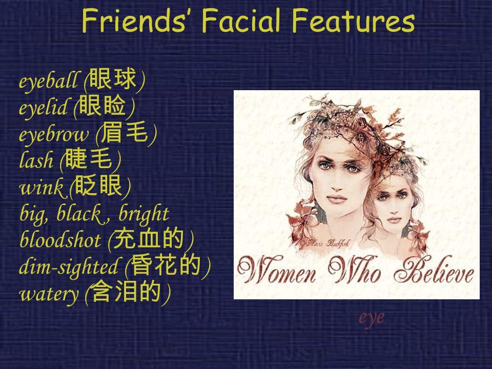 Friends' Facial Features eyeball ( 眼球 ) eyelid ( 眼睑 ) eyebrow ( 眉毛 ) lash ( 睫毛 ) wink ( 眨眼 ) big, black, bright bloodshot ( 充血的 ) dim-sighted ( 昏花的 )