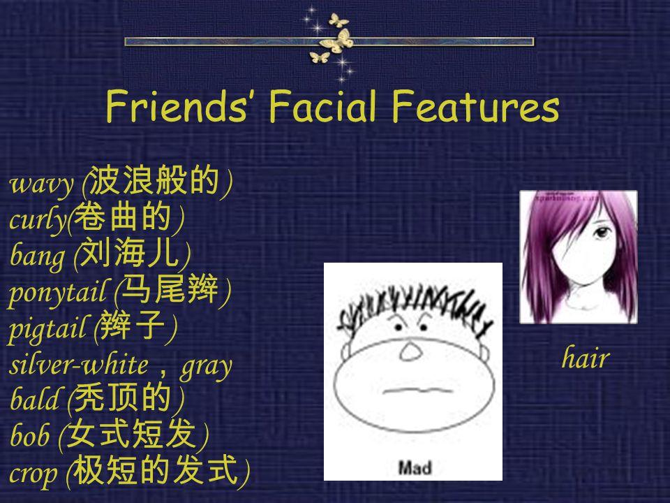 Friends' Facial Features wavy ( 波浪般的 ) curly( 卷曲的 ) bang ( 刘海儿 ) ponytail ( 马尾辫 ) pigtail ( 辫子 ) silver-white , gray bald ( 秃顶的 ) bob ( 女式短发 ) crop (