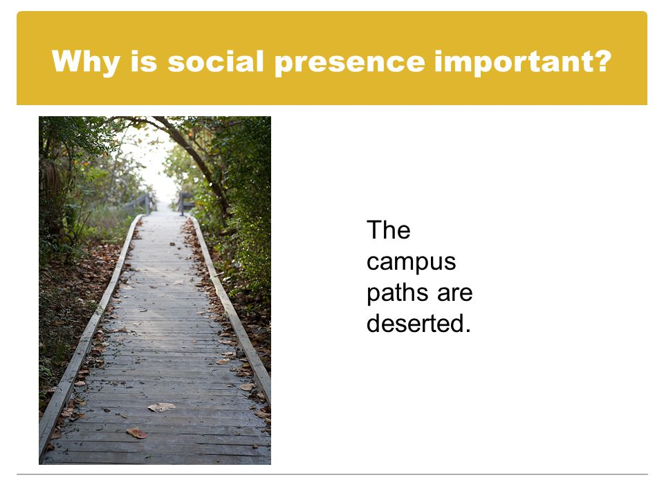 Why is social presence important? There is nobody to talk to about things you don't understand.