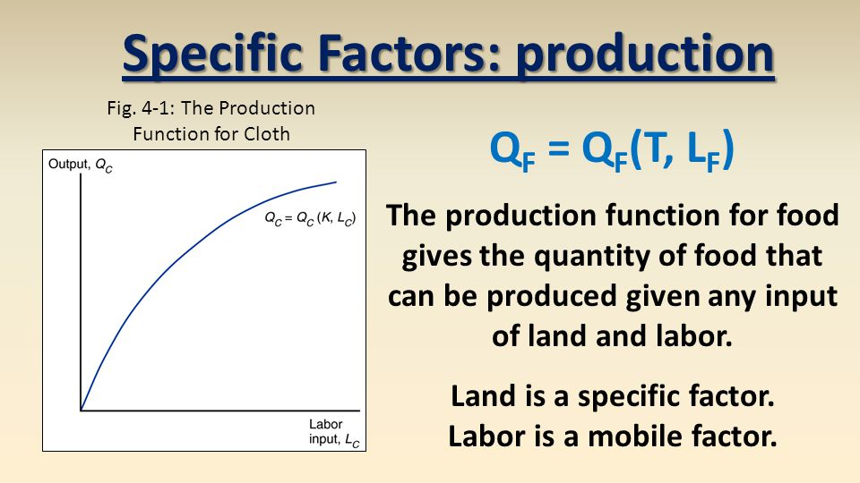 Q F = Q F (T, L F ) The production function for food gives the quantity of food that can be produced given any input of land and labor.