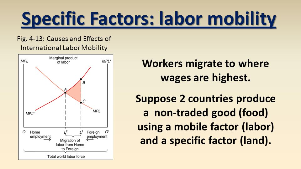 Specific Factors: labor mobility Workers migrate to where wages are highest.