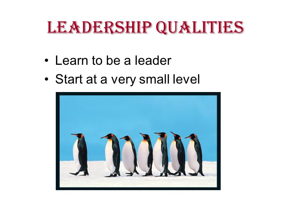 LEADERSHIP QUALITIES Learn to be a leader Start at a very small level