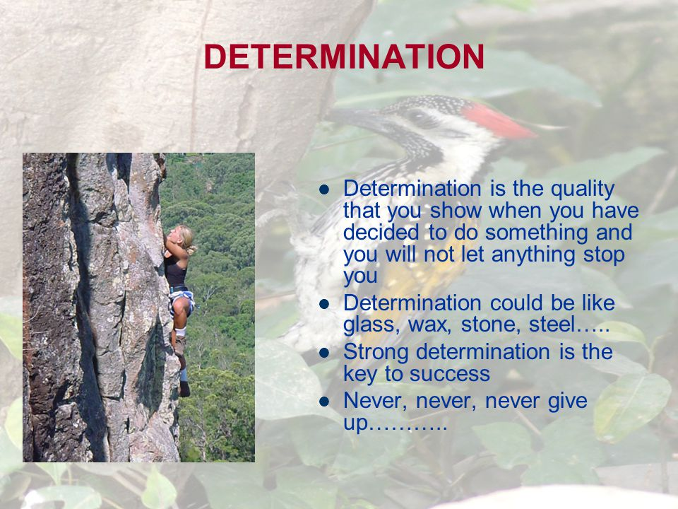 DETERMINATION Determination is the quality that you show when you have decided to do something and you will not let anything stop you Determination could be like glass, wax, stone, steel…..