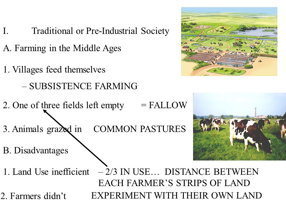 I.Traditional or Pre-Industrial Society A. Farming in the Middle Ages 1.