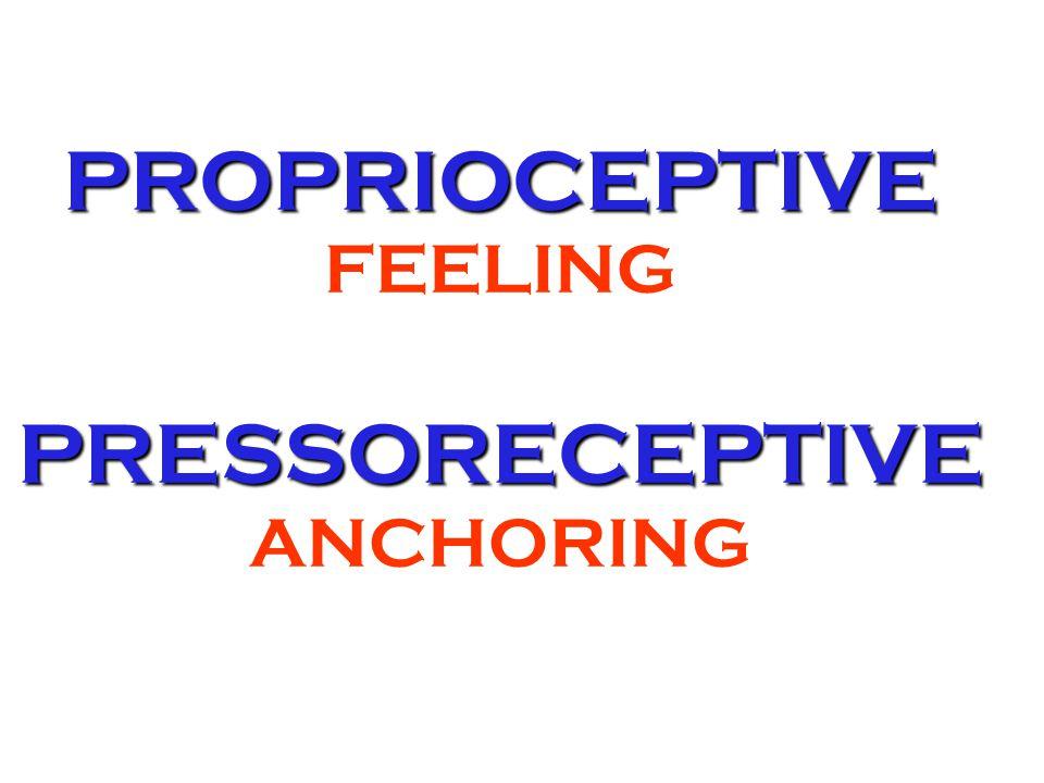 PROPRIOCEPTIVE PRESSORECEPTIVE PROPRIOCEPTIVE FEELING PRESSORECEPTIVE ANCHORING