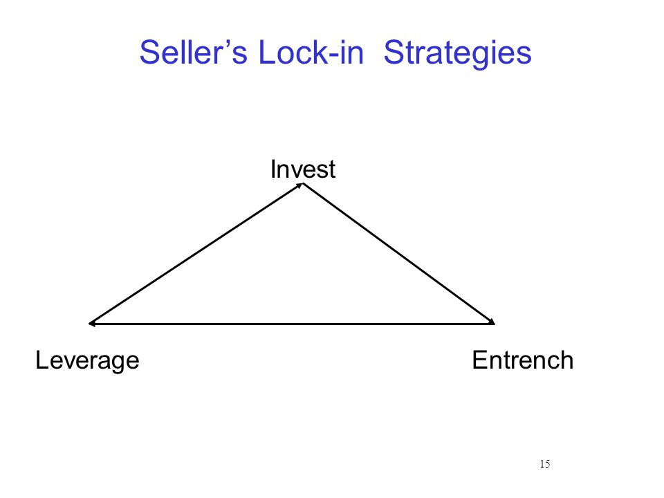 15 Seller's Lock-in Strategies Invest Leverage Entrench