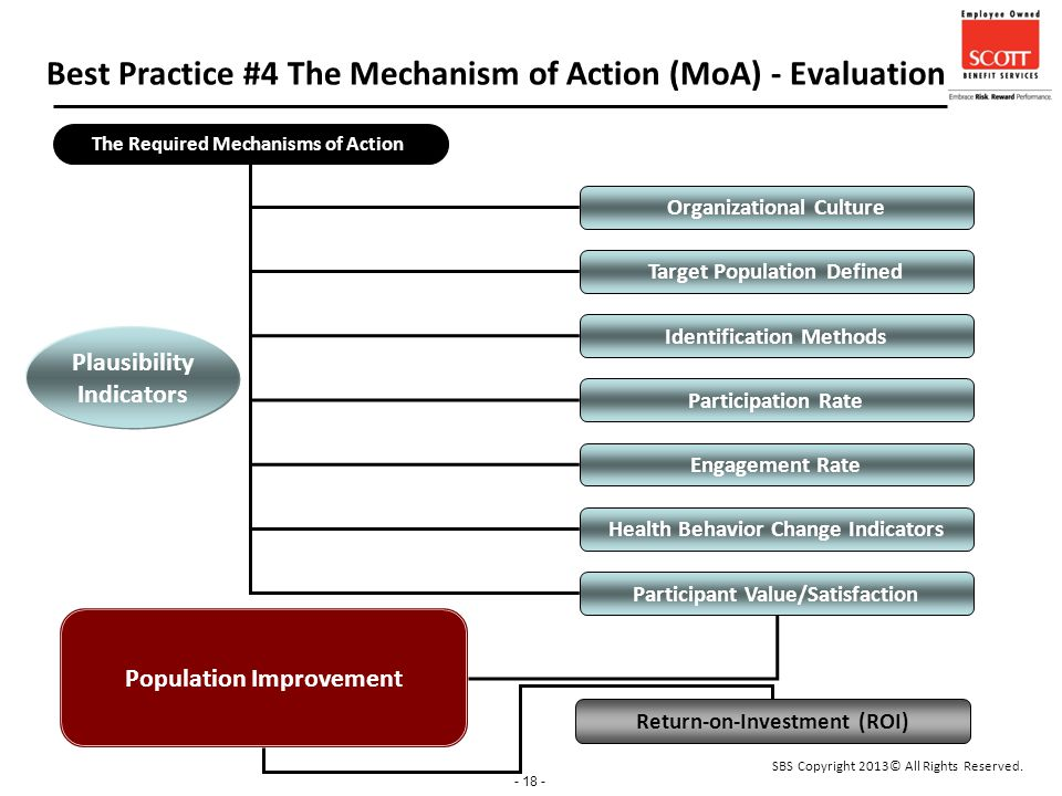 - 18 - Best Practice #4 The Mechanism of Action (MoA) - Evaluation The Required Mechanisms of Action Population Improvement Return-on-Investment (ROI) Organizational Culture Identification Methods Participation Rate Participant Value/Satisfaction Engagement Rate Health Behavior Change Indicators Target Population Defined Plausibility Indicators SBS Copyright 2013© All Rights Reserved.