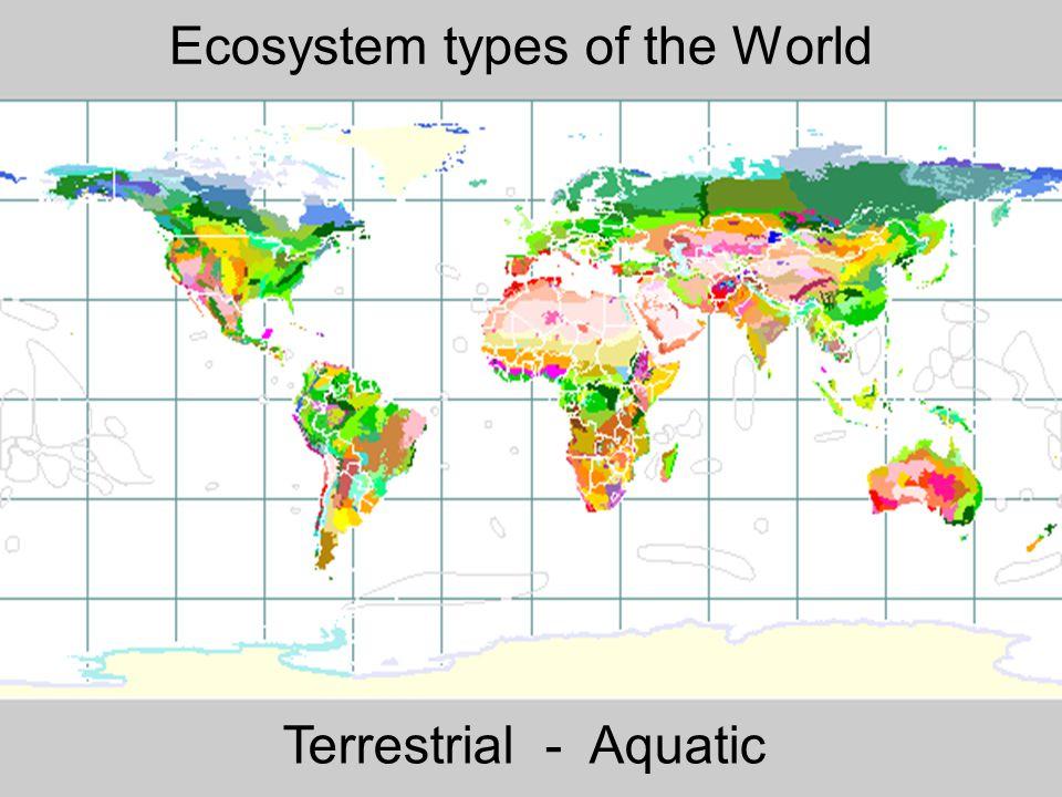 2006 自然科学の英語 -ENS-L3 Ecosystem types of the World Terrestrial - Aquatic