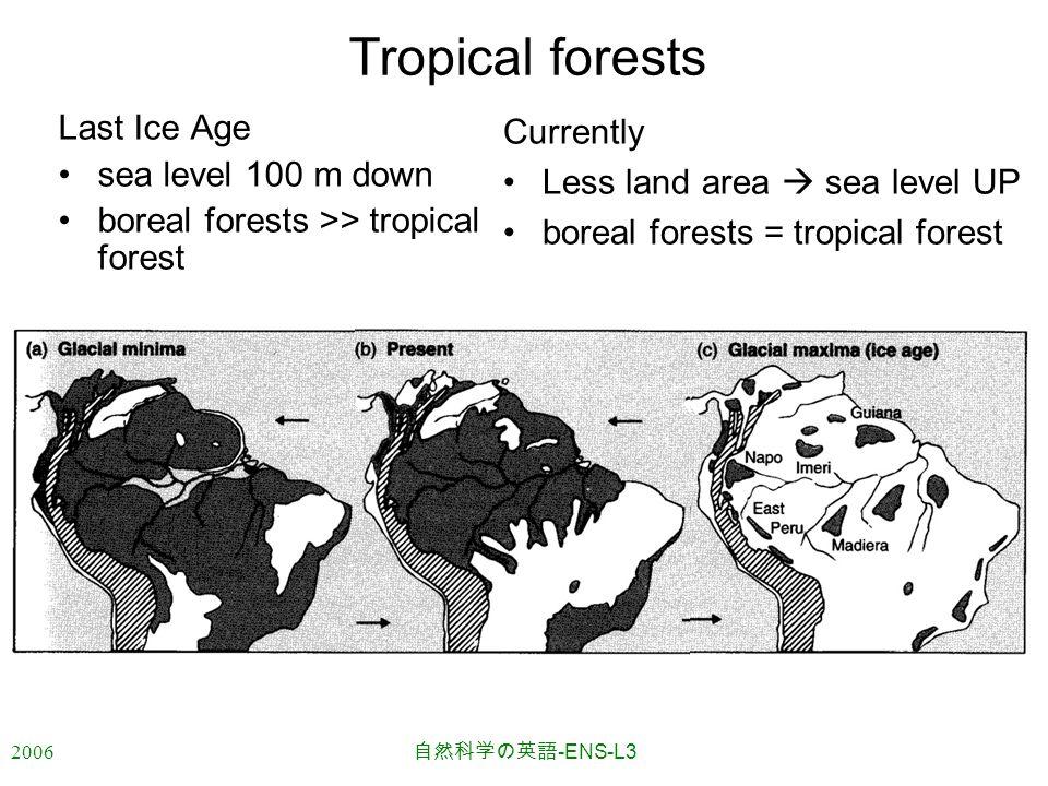 2006 自然科学の英語 -ENS-L3 Tropical forests Last Ice Age sea level 100 m down boreal forests >> tropical forest Currently Less land area  sea level UP boreal forests = tropical forest