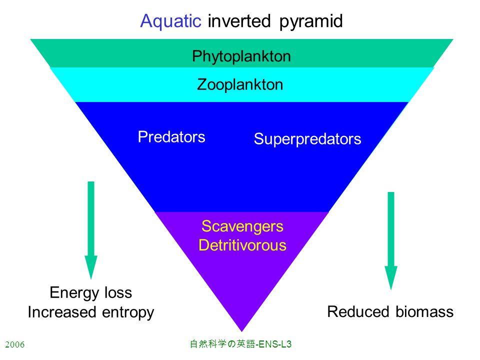 2006 自然科学の英語 -ENS-L3 Energy loss Increased entropy Reduced biomass Aquatic inverted pyramid Phytoplankton Zooplankton Predators Superpredators Scavengers Detritivorous